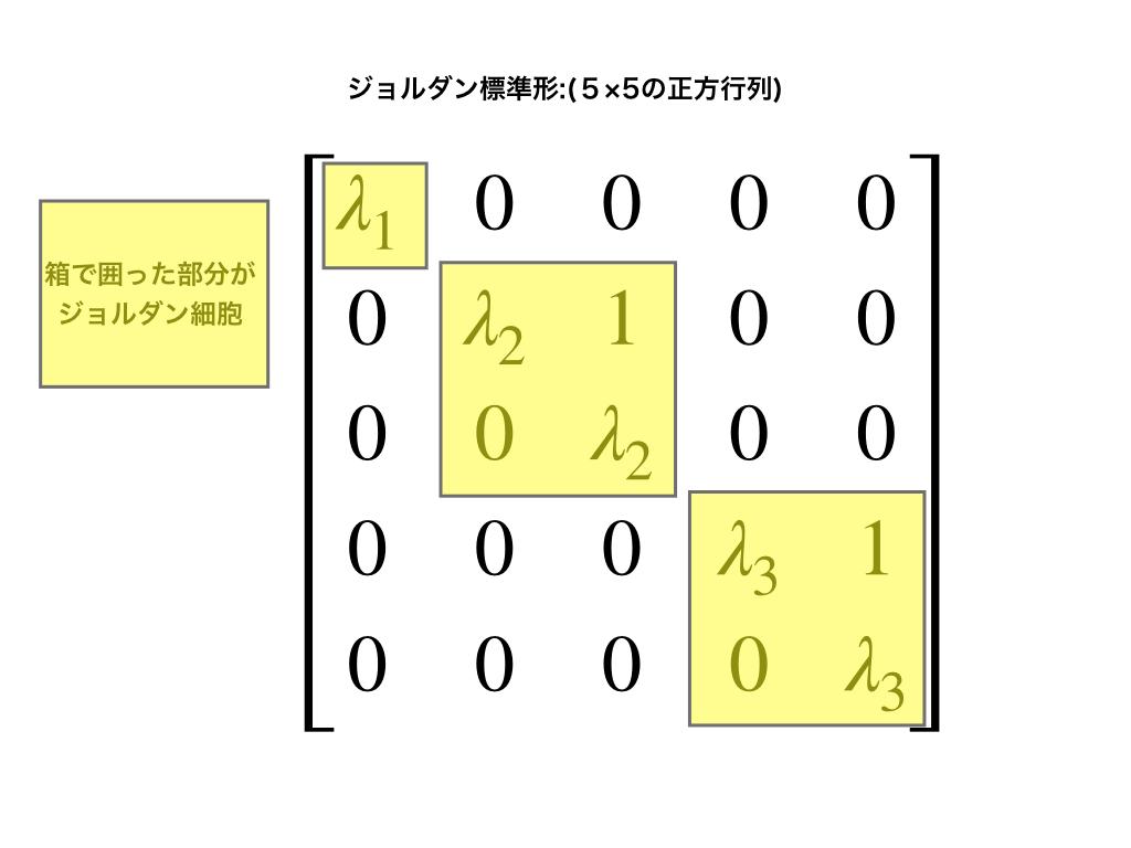 5次正方行列のジョルダン標準形とその内部のジョルダン細胞