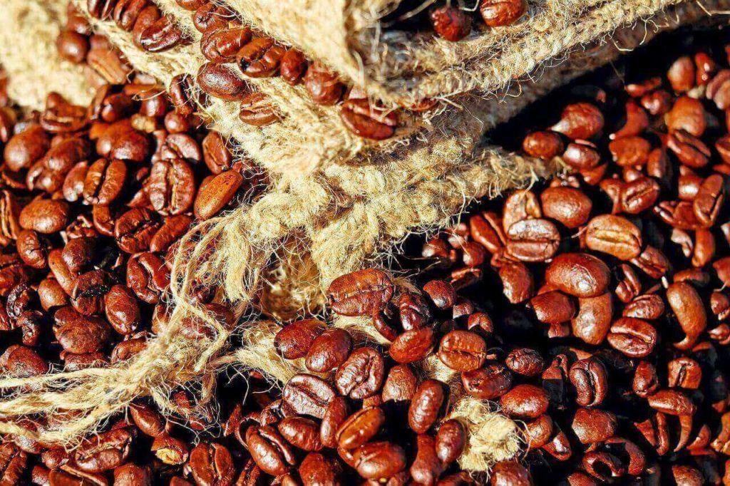 コーヒーとフェアトレード(地理B)イメージ