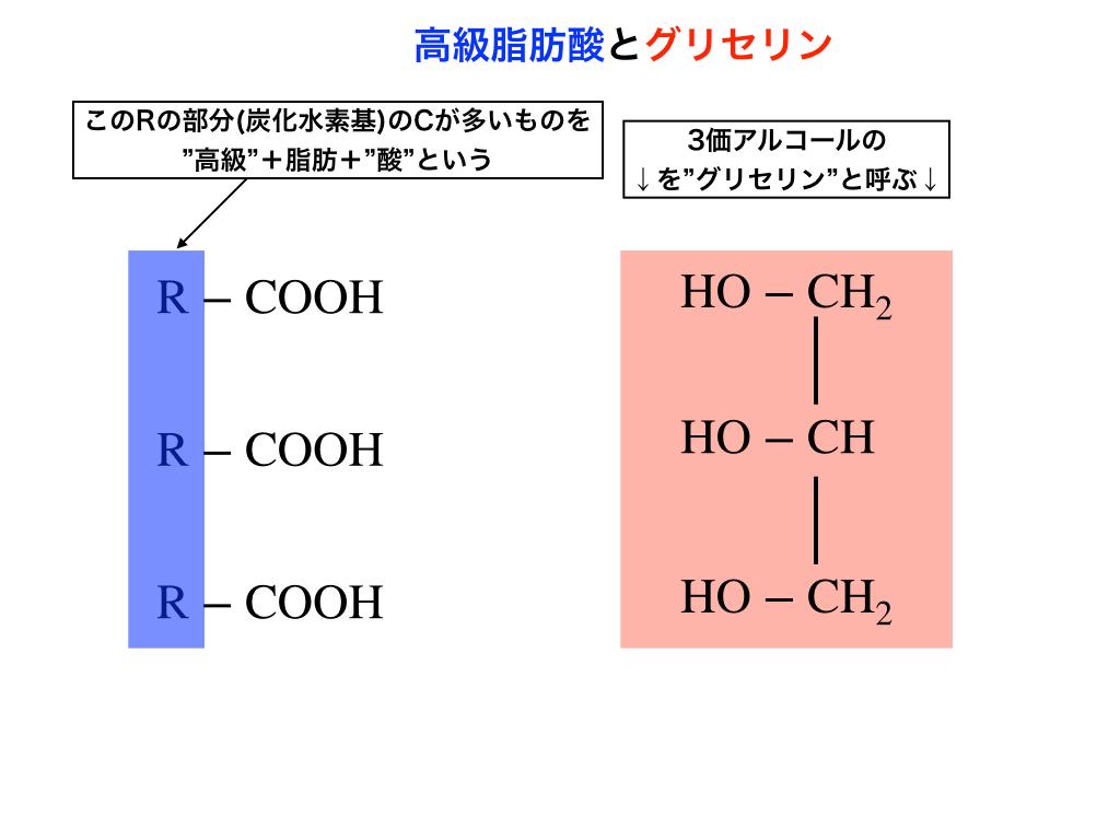 高級脂肪酸とグリセリンのイメージ1